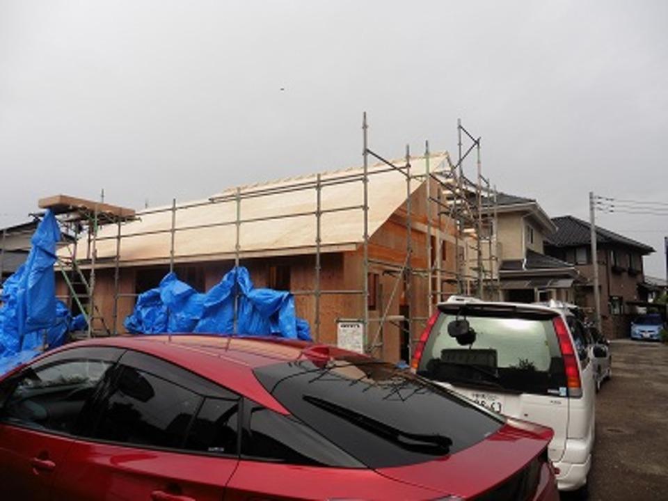 屋根の合板
